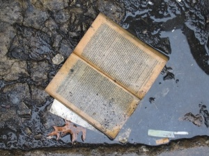 Libro en la lluvia